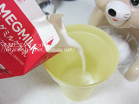 DHCプロテインダイエット体験談 12食目ココア味アレンジ